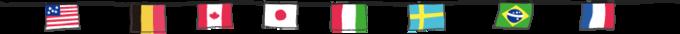 罫線 国旗.png