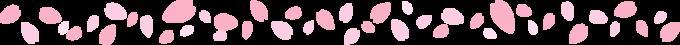 罫線 桜花びら.png